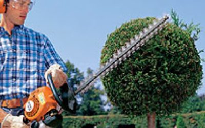 How to Trim your Hedges